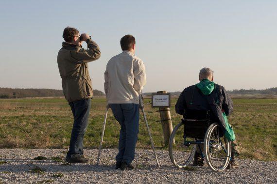 Två stående män och en man sittande i rullstol syns bakifrån. De kikar ut över en öppen äng.