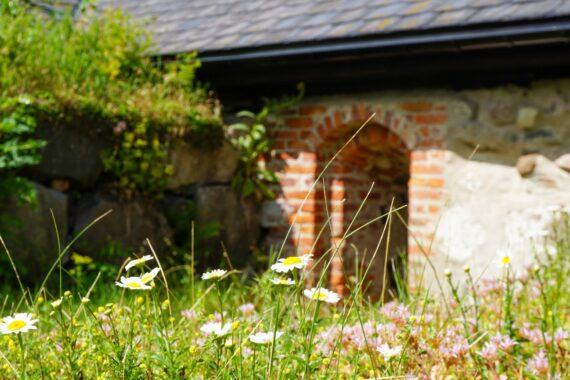 En portal till en byggnadsruin med ängsblommor och buskar som växer tätt intill.