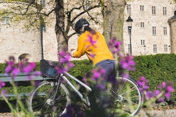 Cykel picknick (8)-webb