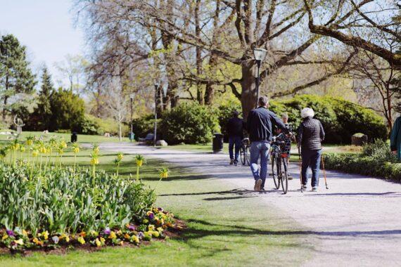 Människor promenerar på en gångstig i stadsparken i Örebro.