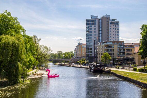 En rosa, uppblåsbar flamingo i en kanal. Ett höghus står på motsatt sida.